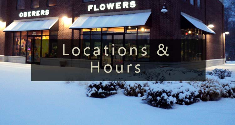 View our Locations and Hours